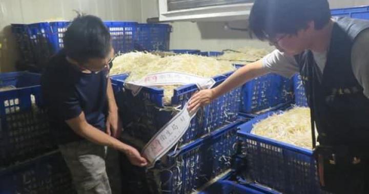 【無良片】新北查獲漂白劑豆芽工廠 業者坦承已賣12年 | 即時新聞 | 20170728
