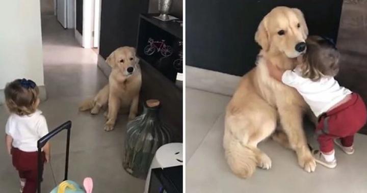 【影片】妹妹要去上學時發現狗狗躲在角落不開心,下一秒衝上前抱緊處理把大家都萌哭了!